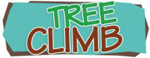 treeclimb-activity